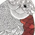Millie Marotta's Profile Image