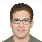 Amr Tarek's Profile Image