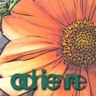 Adrienne E Simpson's Profile Image