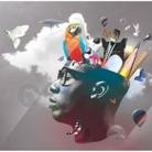 Charles Achibi's Profile Image