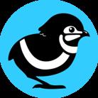 QuailStudio's Profile Image