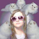 Melissa Piombo's Profile Image